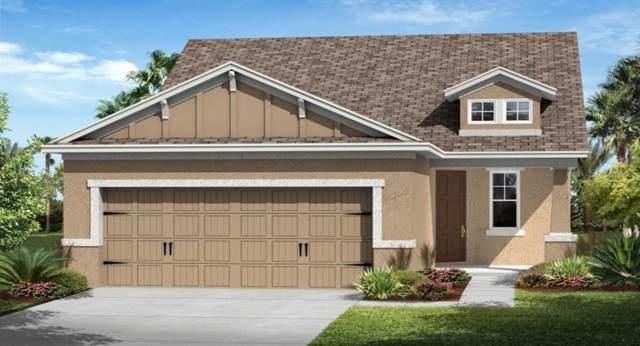 3466 Sagebrush Street, Harmony, FL 34773 (MLS #T3190441) :: Homepride Realty Services