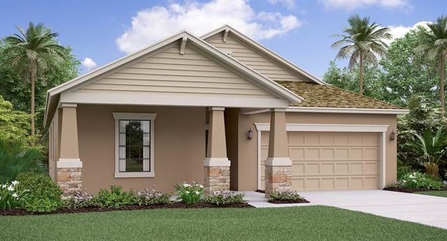 9806 Sage Creek Drive, Ruskin, FL 33573 (MLS #T3190501) :: Medway Realty
