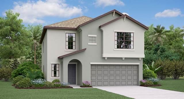 5016 Sable Chime Drive, Wimauma, FL 33598 (MLS #T3190510) :: The Brenda Wade Team