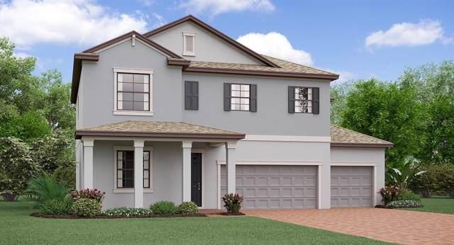 11419 Sunburst Marble Road, Riverview, FL 33579 (MLS #T3190528) :: NewHomePrograms.com LLC