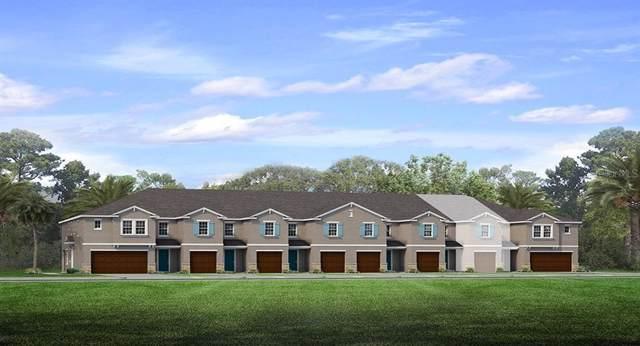 18642 Noble Caspian Drive, Lutz, FL 33548 (MLS #T3190537) :: Team Bohannon Keller Williams, Tampa Properties