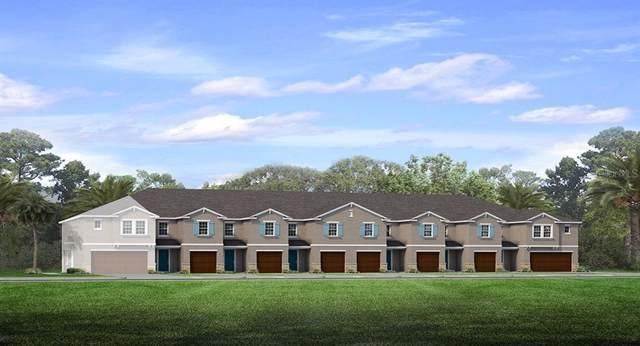 18644 Noble Caspian Drive, Lutz, FL 33548 (MLS #T3190548) :: Team Bohannon Keller Williams, Tampa Properties