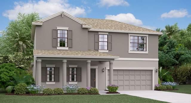 9628 Ivory Drive, Ruskin, FL 33573 (MLS #T3190554) :: Dalton Wade Real Estate Group