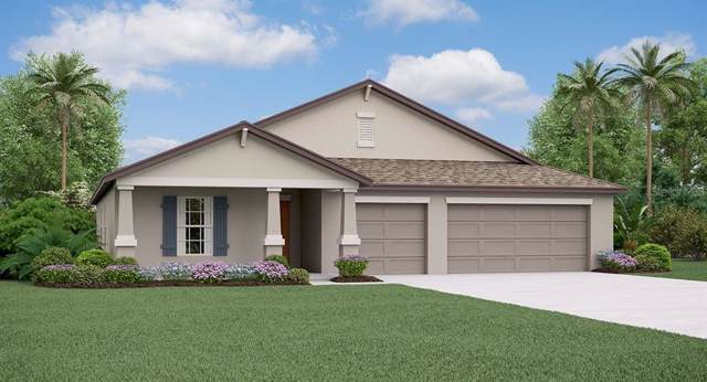 10864 Sage Canyon Drive, Riverview, FL 33578 (MLS #T3190622) :: The Brenda Wade Team