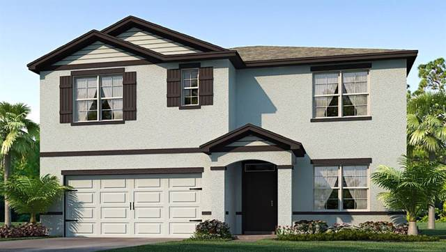 7030 Silverado Ranch Boulevard, Zephyrhills, FL 33541 (MLS #T3190636) :: Rabell Realty Group
