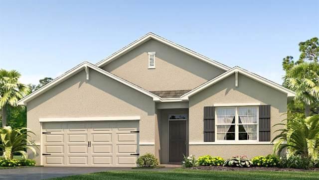 7018 Silverado Ranch Boulevard, Zephyrhills, FL 33541 (MLS #T3190654) :: Griffin Group