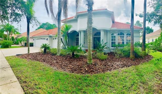 10248 Waterside Oaks Drive, Tampa, FL 33647 (MLS #T3190765) :: Team Bohannon Keller Williams, Tampa Properties