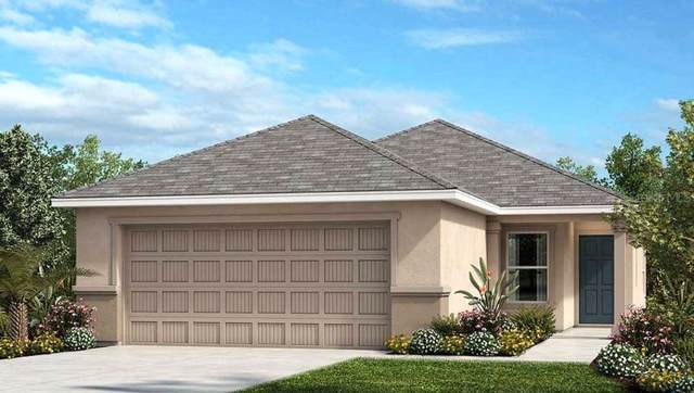 11225 Gold Compass Street, Gibsonton, FL 33534 (MLS #T3190979) :: The Price Group