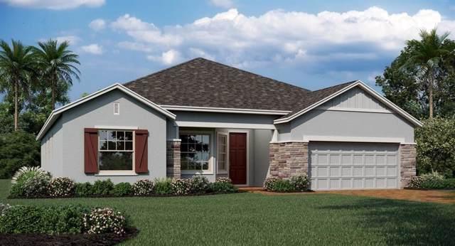 1690 Lake Sims Parkway, Ocoee, FL 34761 (MLS #T3191057) :: Team Bohannon Keller Williams, Tampa Properties
