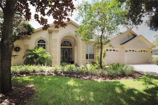 15946 Sorawater Drive, Lithia, FL 33547 (MLS #T3191271) :: Kendrick Realty Inc