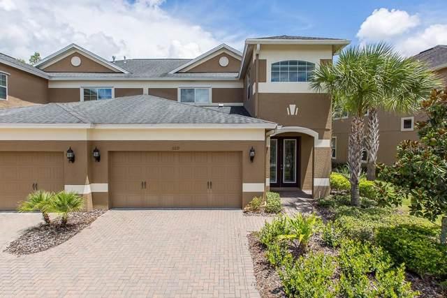 11219 Roseate Drive, Tampa, FL 33626 (MLS #T3191409) :: Team 54