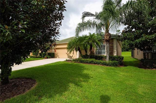 13211 Tradition Drive, Dade City, FL 33525 (MLS #T3191447) :: Rabell Realty Group