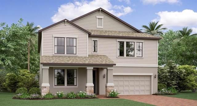13210 Satin Lily Drive, Riverview, FL 33579 (MLS #T3191458) :: Team Bohannon Keller Williams, Tampa Properties
