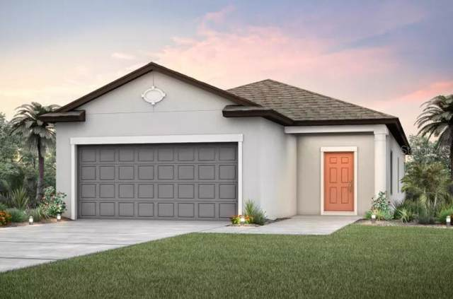 5015 Levana Street, Palmetto, FL 34221 (MLS #T3191470) :: Gate Arty & the Group - Keller Williams Realty Smart