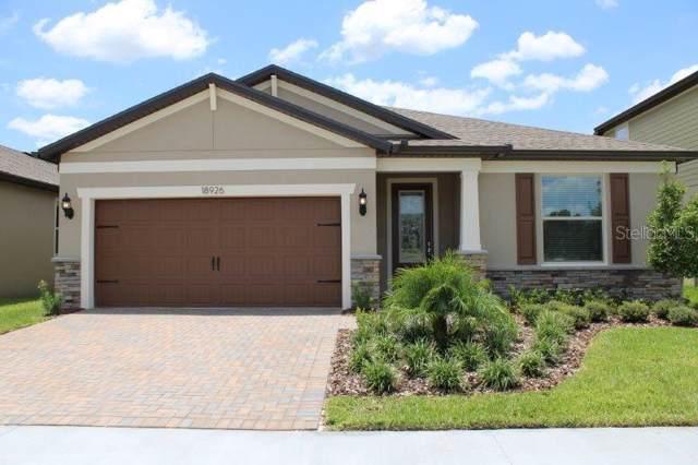 18926 Willowmore Cedar Drive, Lutz, FL 33558 (MLS #T3191472) :: Lockhart & Walseth Team, Realtors