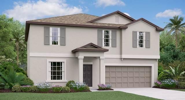 1808 Broad Winged Hawk Drive, Ruskin, FL 33570 (MLS #T3191526) :: Charles Rutenberg Realty