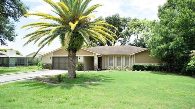 8818 Heather Boulevard, Weeki Wachee, FL 34613 (MLS #T3191602) :: Charles Rutenberg Realty
