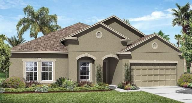 1809 Henley Street, Saint Cloud, FL 34771 (MLS #T3191637) :: Team 54