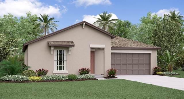 3323 Lytton Hall Drive, Zephyrhills, FL 33540 (MLS #T3191670) :: Griffin Group