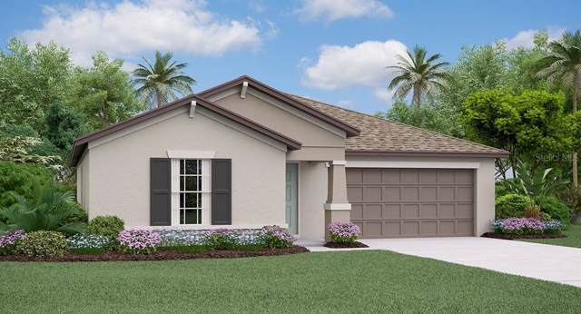 3299 Lytton Hall Drive, Zephyrhills, FL 33540 (MLS #T3191674) :: Griffin Group