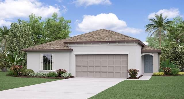 3311 Lytton Hall Drive, Zephyrhills, FL 33540 (MLS #T3191681) :: Griffin Group