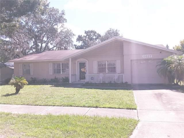 6627 Winding Oak Drive, Tampa, FL 33625 (MLS #T3191698) :: Premium Properties Real Estate Services