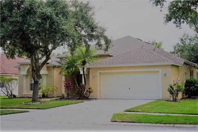19117 Dove Creek Drive, Tampa, FL 33647 (MLS #T3191824) :: Team Bohannon Keller Williams, Tampa Properties