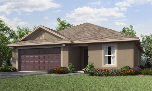6897 Redbay Drive, Brooksville, FL 34602 (MLS #T3191871) :: Delgado Home Team at Keller Williams
