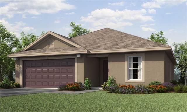 6897 Redbay Drive, Brooksville, FL 34602 (MLS #T3191871) :: The Brenda Wade Team
