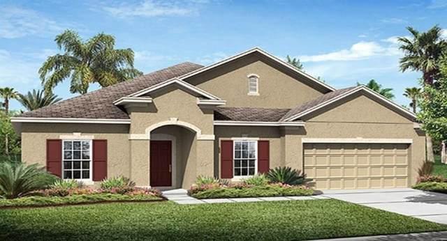 3665 Vega Creek Drive, Saint Cloud, FL 34772 (MLS #T3191916) :: Team 54