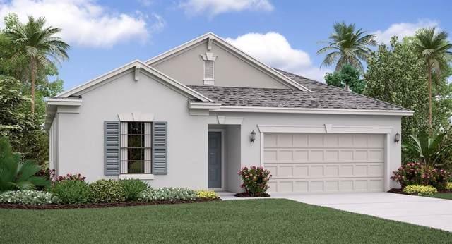 24880 Lambrusco Loop, Lutz, FL 33559 (MLS #T3191937) :: Charles Rutenberg Realty