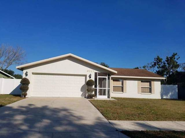 6217 Palmview Court, Tampa, FL 33625 (MLS #T3191939) :: GO Realty