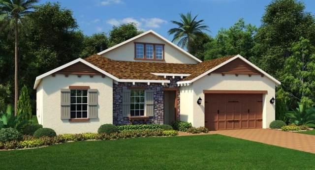 14474 Sunbridge Circle, Winter Garden, FL 34787 (MLS #T3191952) :: Bustamante Real Estate