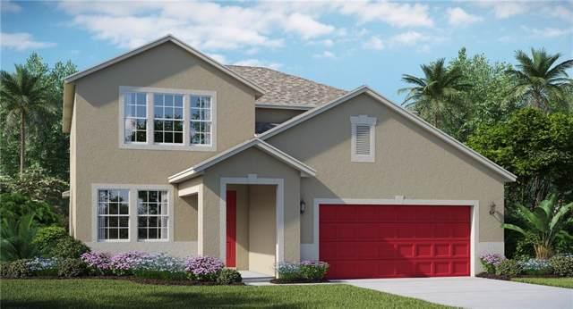 25207 Lambrusco Loop, Lutz, FL 33559 (MLS #T3191962) :: Charles Rutenberg Realty