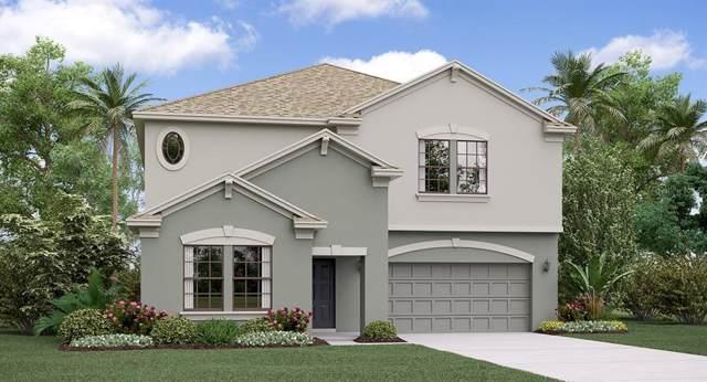 25212 Lambrusco Loop, Lutz, FL 33559 (MLS #T3191980) :: Charles Rutenberg Realty