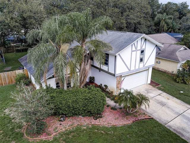 4163 Mallard Drive, Safety Harbor, FL 34695 (MLS #T3192011) :: Bridge Realty Group