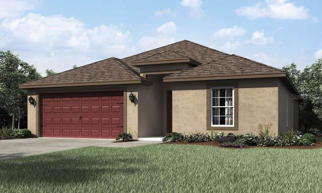 31374 Marigold Court, Brooksville, FL 34602 (MLS #T3192035) :: The Brenda Wade Team