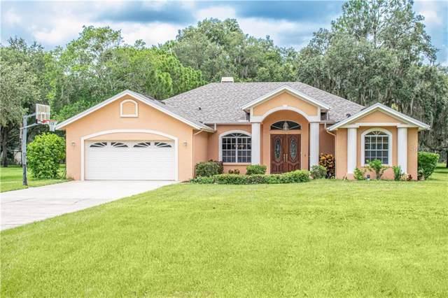 18012 Spencer Road, Odessa, FL 33556 (MLS #T3192186) :: Team Bohannon Keller Williams, Tampa Properties