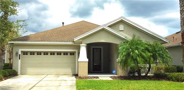 20111 Heritage Point Drive, Tampa, FL 33647 (MLS #T3192203) :: Andrew Cherry & Company