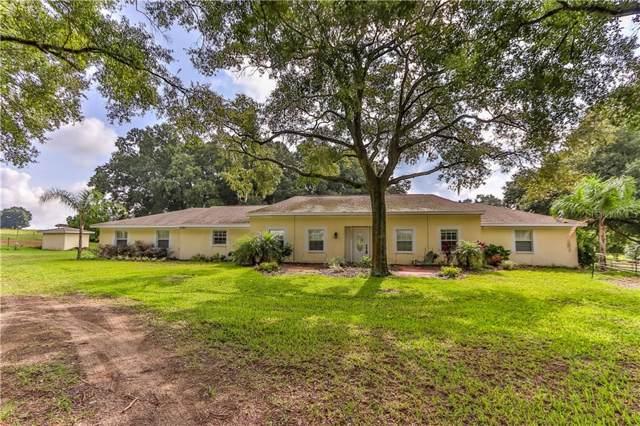 19310 Argus Drive, Dade City, FL 33523 (MLS #T3192209) :: Team 54