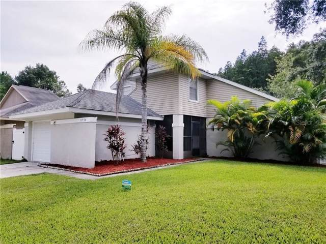 11934 Hickorynut Drive, Tampa, FL 33625 (MLS #T3192228) :: GO Realty