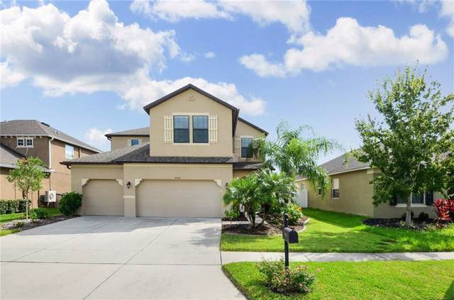 5500 Angelonia Terrace, Land O Lakes, FL 34639 (MLS #T3192342) :: The Duncan Duo Team