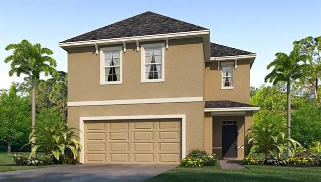 6582 Seaway Drive, Brooksville, FL 34601 (MLS #T3192352) :: Burwell Real Estate