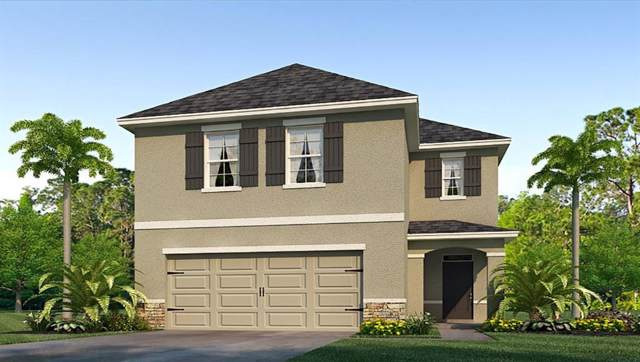 5929 Silver Sage Way, Sarasota, FL 34232 (MLS #T3192428) :: Lockhart & Walseth Team, Realtors