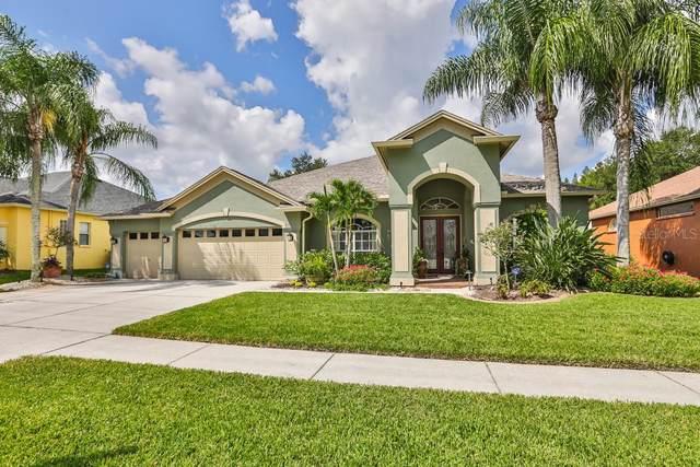 9909 Kingshyre Way, Tampa, FL 33647 (MLS #T3192433) :: Florida Real Estate Sellers at Keller Williams Realty