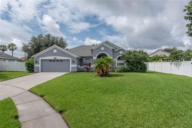 8934 Wavyedge Court, Trinity, FL 34655 (MLS #T3192466) :: RE/MAX CHAMPIONS