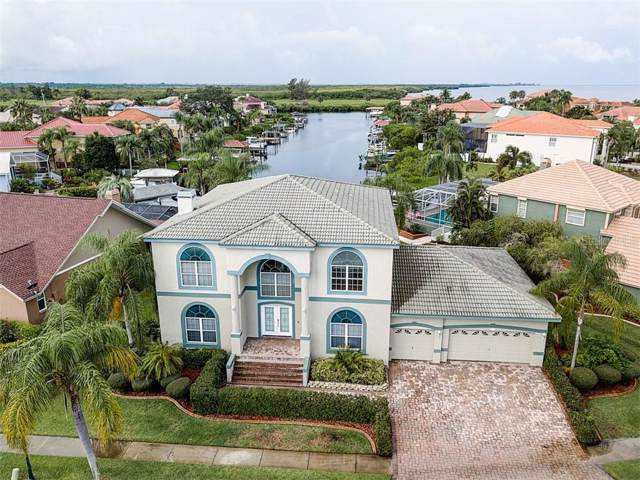950 Symphony Isles Boulevard, Apollo Beach, FL 33572 (MLS #T3192536) :: Cartwright Realty