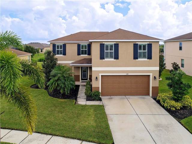 228 Star Shell Drive, Apollo Beach, FL 33572 (MLS #T3192583) :: Griffin Group
