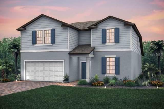 10821 Rolling Moss Rd., Tampa, FL 33647 (MLS #T3192621) :: Florida Real Estate Sellers at Keller Williams Realty