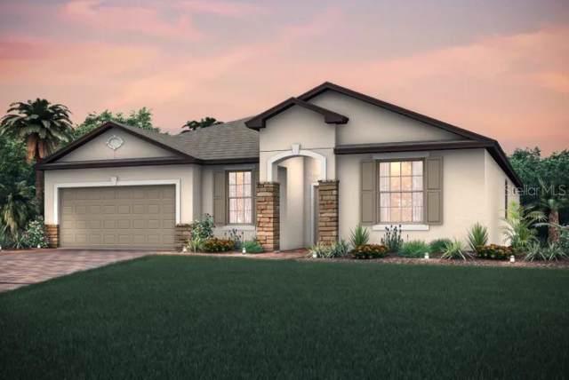 10701 Foxtail Pasture Way, Tampa, FL 33647 (MLS #T3192629) :: Florida Real Estate Sellers at Keller Williams Realty